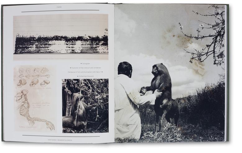 Joan Fontcuberta. The Photography of Nature & The Nature of Photography (MACK, 2013)